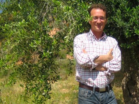 Santiago Recasens, Olivenbaum, olive tree, Davalia Olivenöl, Davalia olive oil, Ciudad Condal