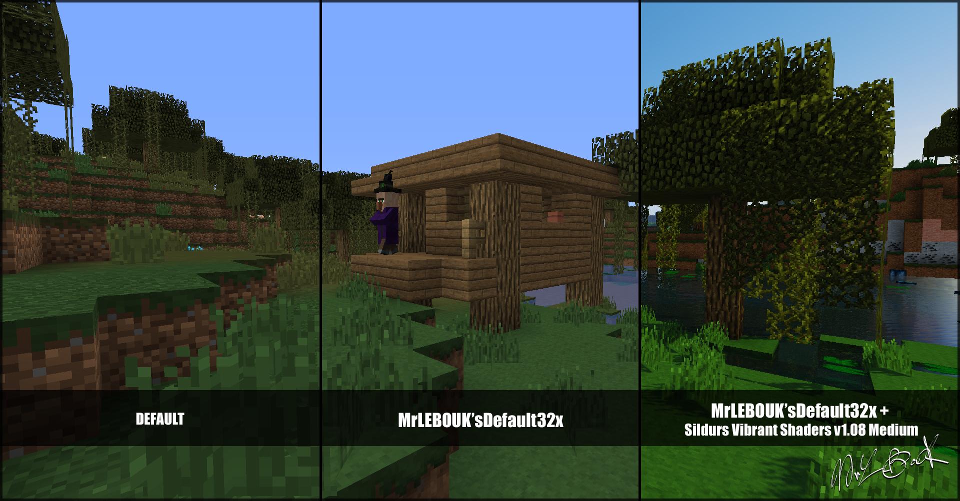 Marais et hutte : Resource pack minecraft MrLEBOUK'SDEFAUT32x