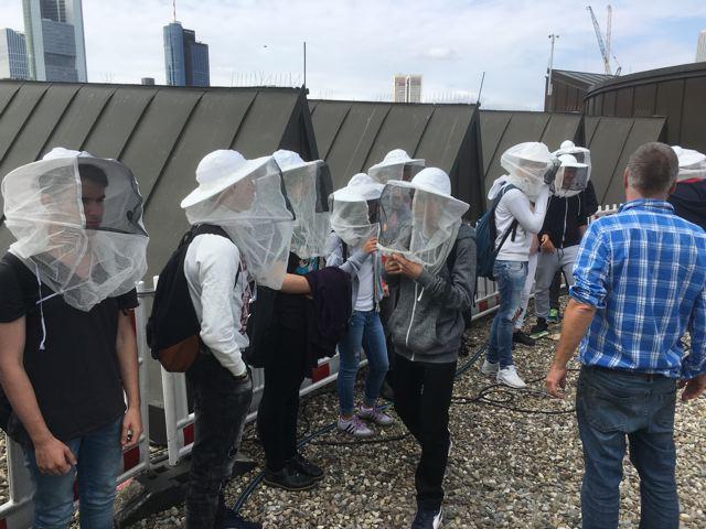 Auf dem Dach des Museums für Moderne Kunst