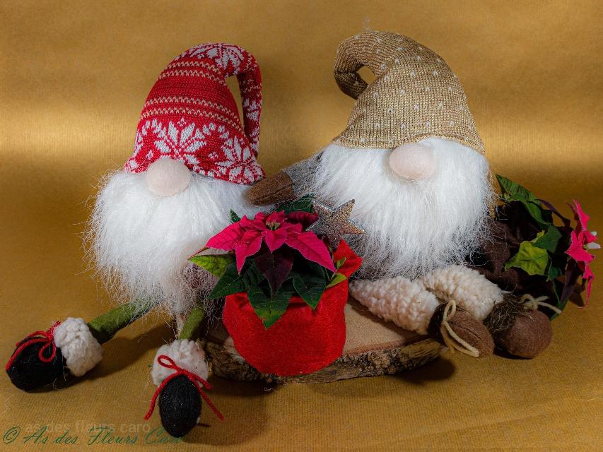 Figurines et plantes de Noël