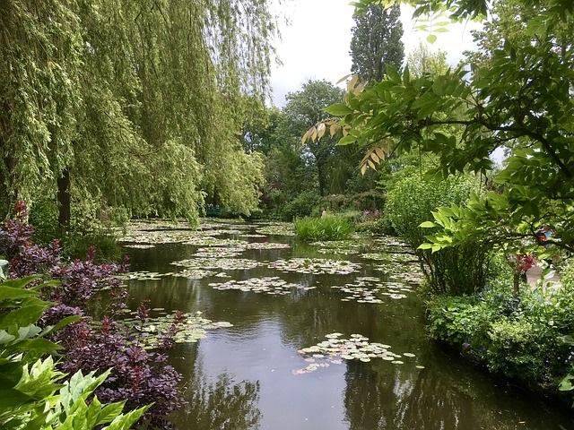 Bild: Wassergarten, Gartenteich, Gartenbrunnen, Bachlauf,