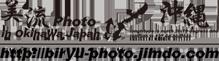 美流Photo in 沖縄