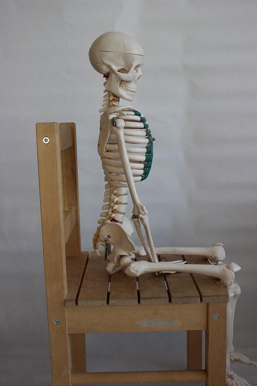 Skelettis Steißbein ist nicht belastet