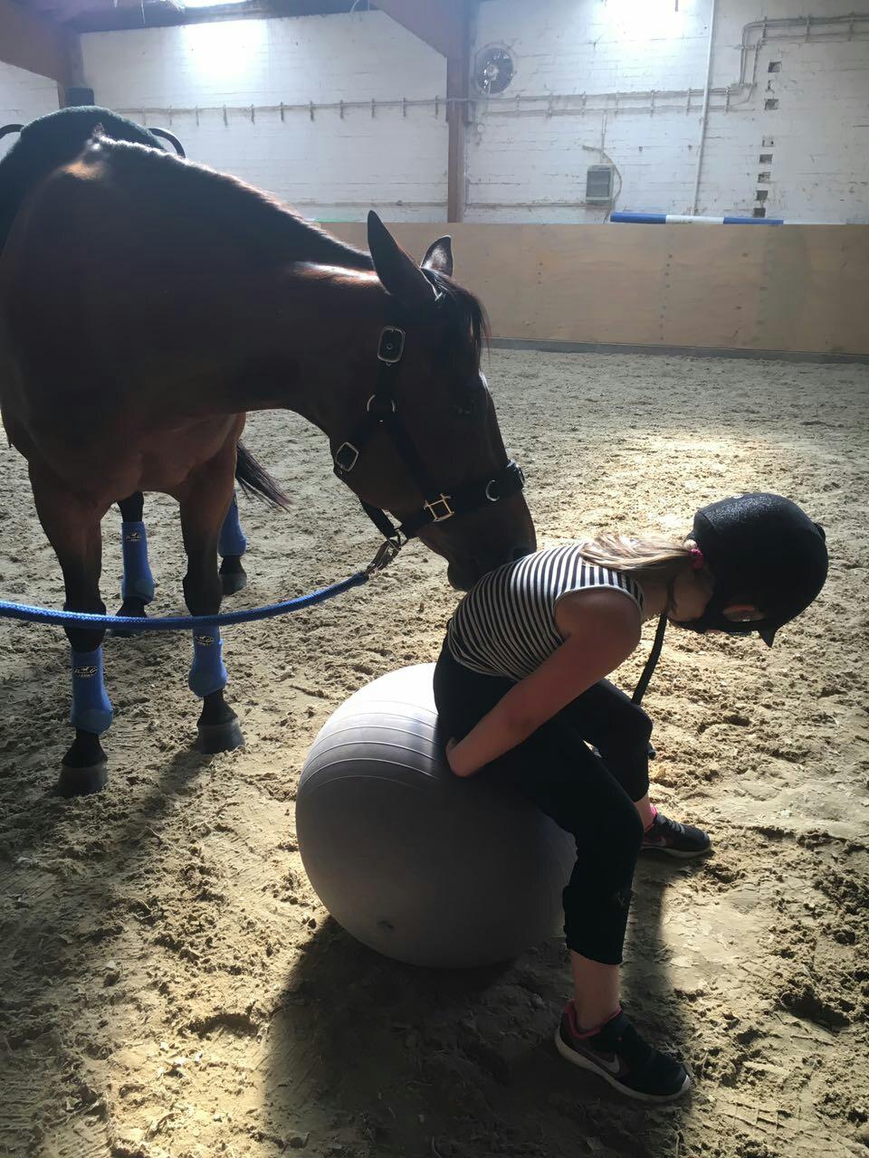 Das Pferd arbeitet mit. Schon die kleinen Mäuse fangen an, am korrekten Sitz zu arbeiten.