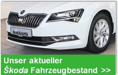 >> Unser tagesaktueller ŠKODA Fahrzeugbestand >>