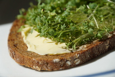Einfach lecker: Frisches Brot mit Kresse