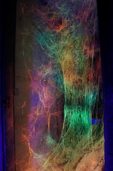 Toile d'araignée, éclairage: Serge Le Goff.