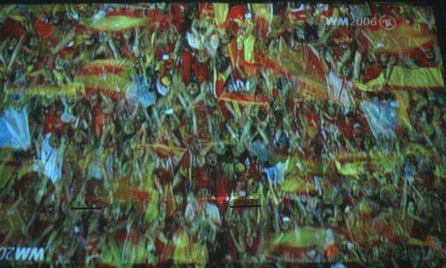 WM Fan im Stadion
