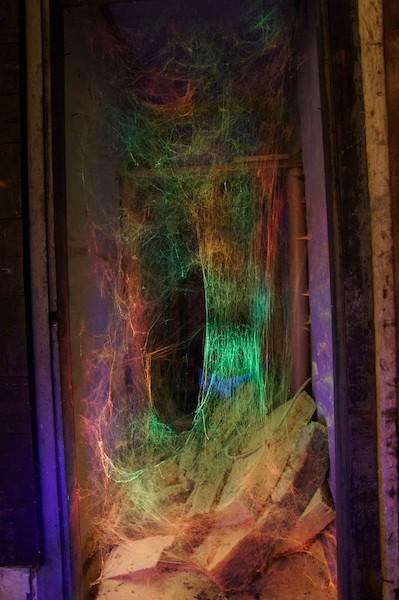 Spinnennetz,  Licht: Serge Le Goff.