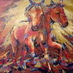 Horses 100/100 acryl niet meer verkrijgbaar