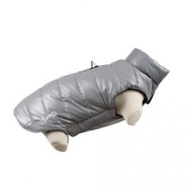doudoune grise chien