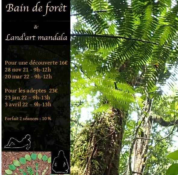 Bain de forêt et Land'art -nov 2021 à avril 2022
