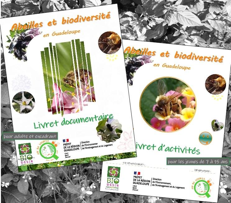 Sortie des livrets Abeilles et biodiversité en Guadeloupe !