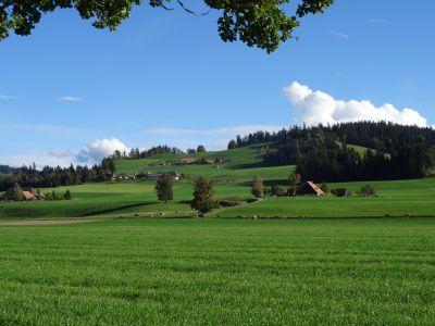 bücher kanton bern bernensis bernensia emmental berner oberland