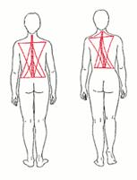 Beckenschiefstand, Patricia Kressig-Schori, Praxis für Energetische Körpertherapien, Zürich