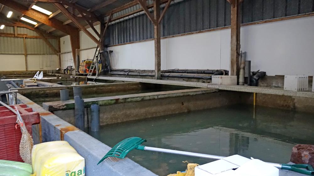 Bassins de stockage extérieurs