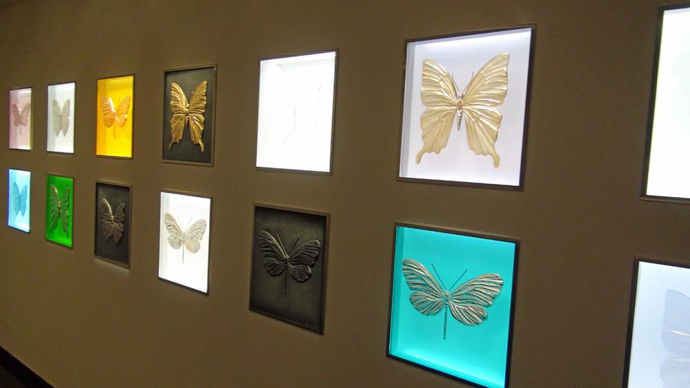 """Les papillons de la collection """"Eternal"""" sur le chemin menant à la cave"""