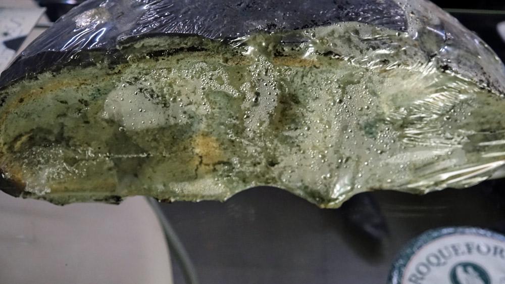 Culture de pénicillium roqueforti sur pain