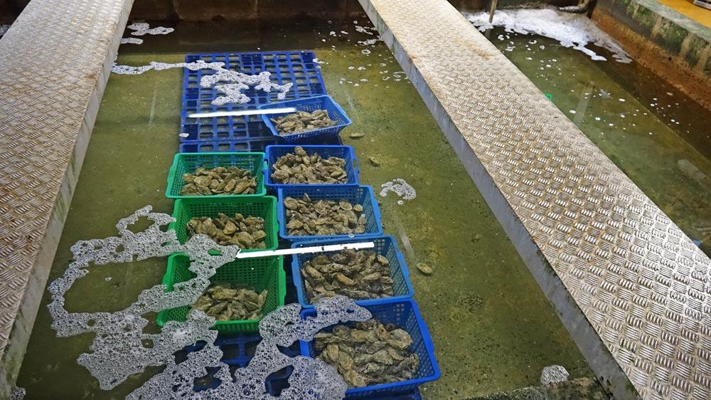 Bassins de stockage