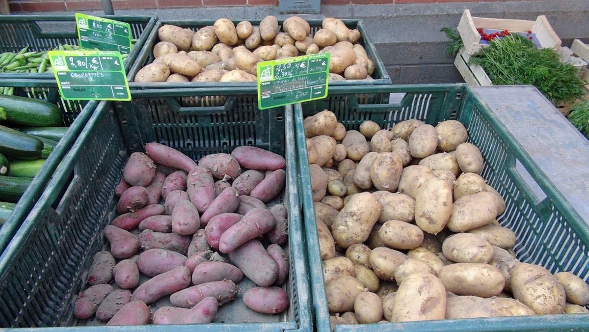 Pommes de terre bio de l'Île de Batz