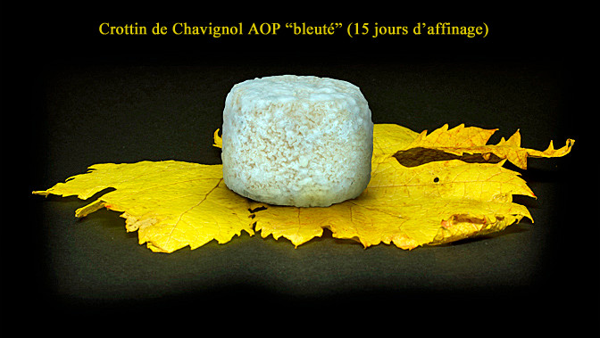 """Crottin de Chavignol fermier """"bleuté"""" affiné 15 jours - Crédit photosite www.romaindubois-affineur.com"""