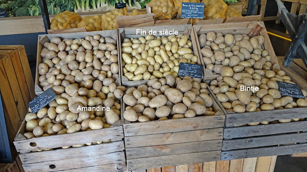 Le rayon pommes de terre