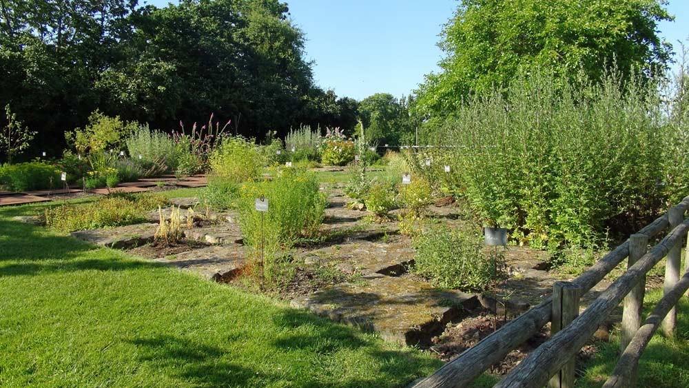 Château de la Roche Jagu : les jardins