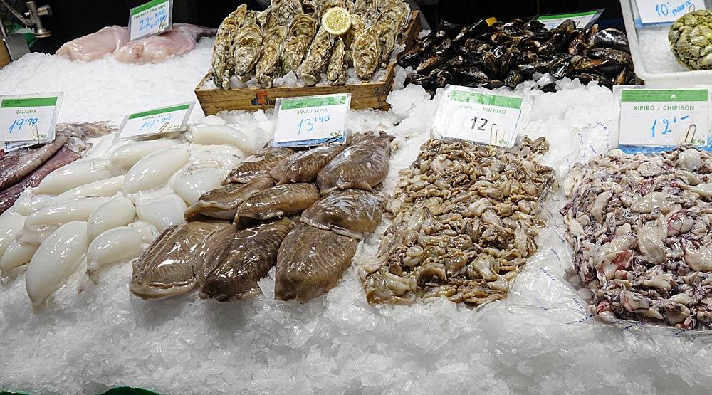 Poulpes, calamars, chipirons ...