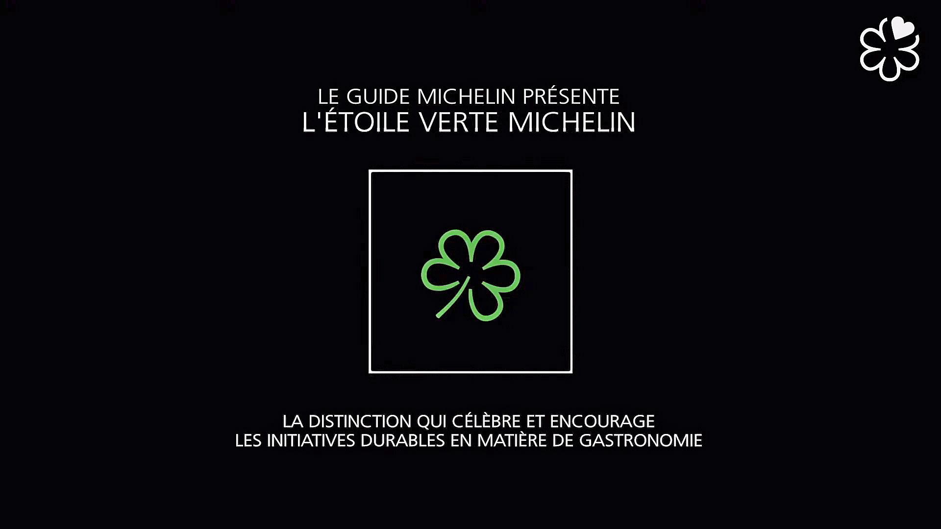 Le logo - Crédit photo Michelin