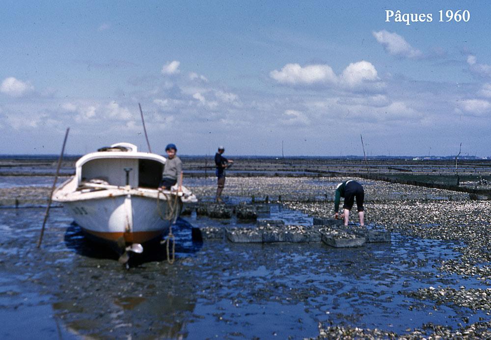 Mézigue sur le bassin d'Arcachon en 1960 !