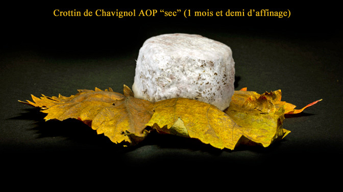 """Crottin de Chavignol fermier """"sec"""" affiné 1 mois et demi - Crédit photosite www.romaindubois-affineur.com"""