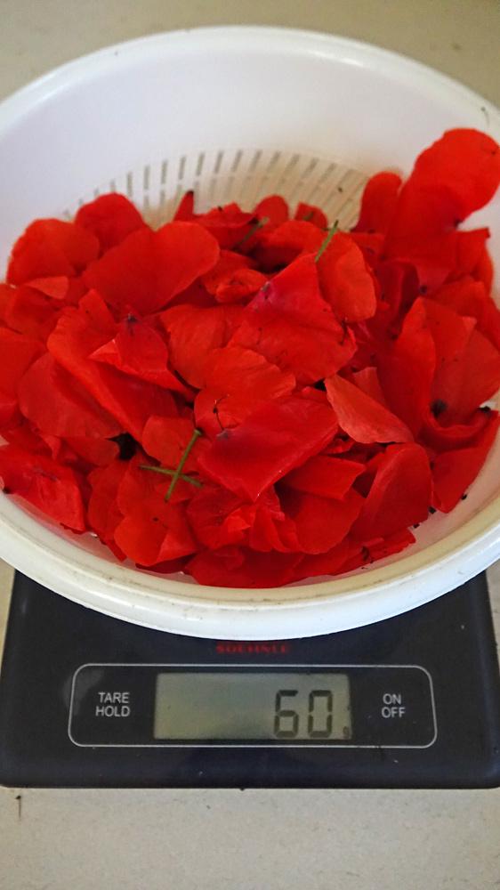 Poids net des fleurs de coquelicots cueillies