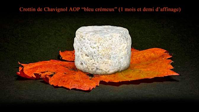 """Crottin de Chavignol fermier """"bleu crémeux"""" affiné 1 mois et demi - Crédit photo : site www.romaindubois-affineur.com"""