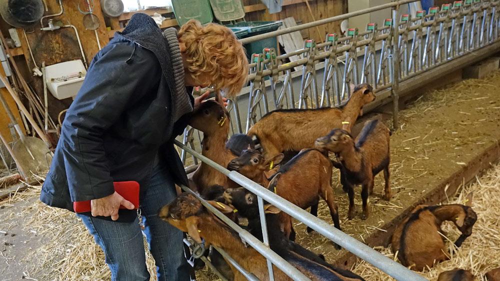 """Une passionnée des """"chèvres"""" !"""