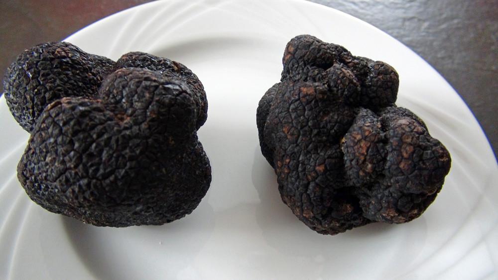 Deux belles truffes