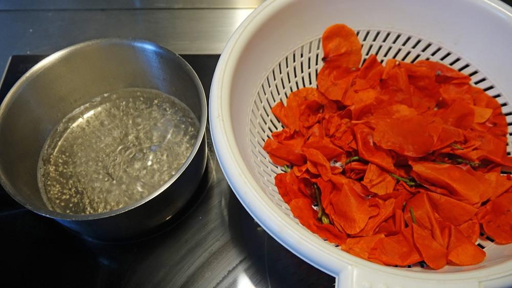 Première infusion avec 30 g de fleurs de coquelicot