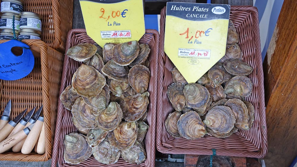 Les huîtres plates de Cahue