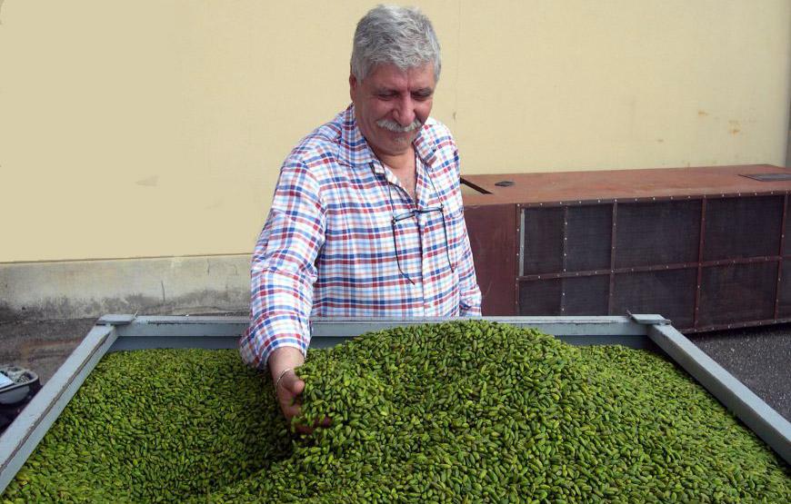 Des pistaches de Bronte émondées - Source www.bronteinsieme.it