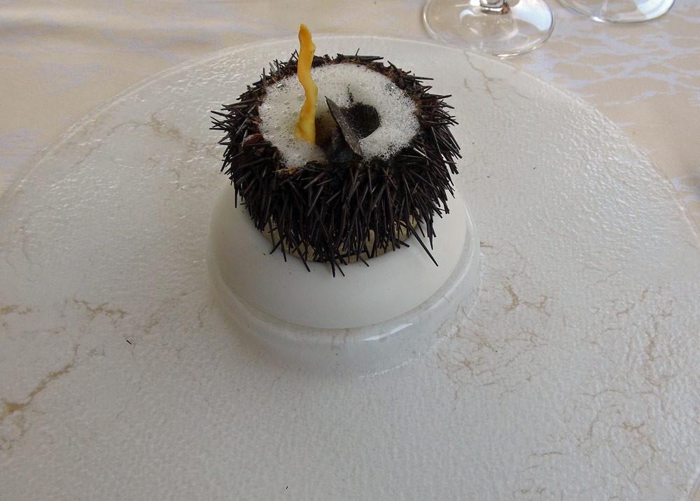 Oursin en surprise à la truffe