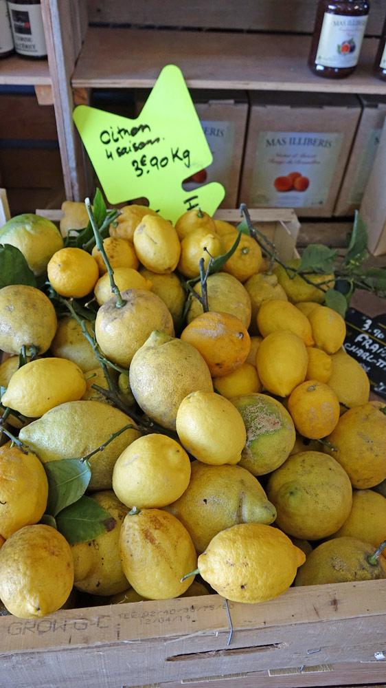 Citrons 4 saisons