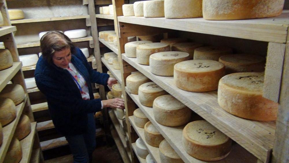 La cave d'affinage et le choix des fromages par la compagne d'Alain Domini