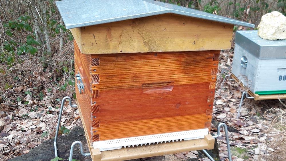 Une des ruches