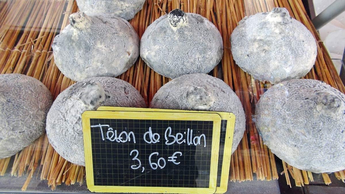 """Le Têton de Beillon (un fromage """"très"""" connu et beaucoup apprécié aux Hautes Roches de Rochecorbon)"""