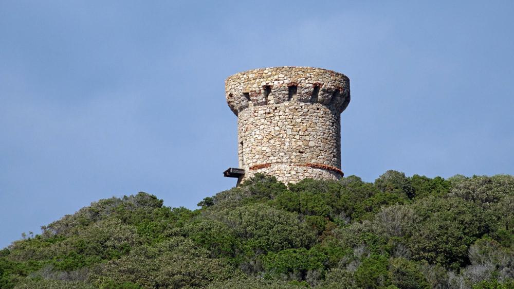 Tour génoise d'Isolella, de loin
