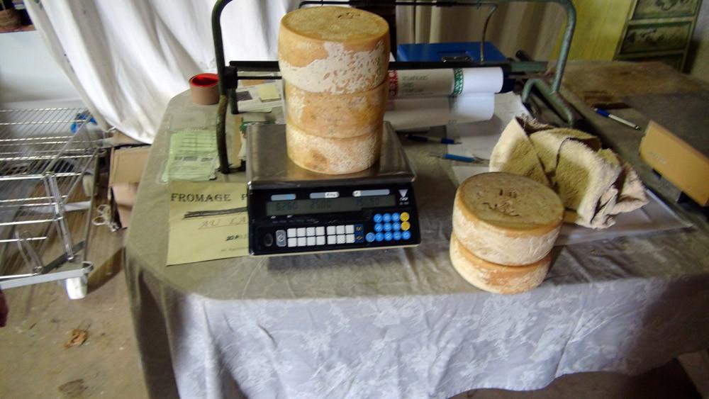 Les 5 fromages achetés soit plus de 12 kg !