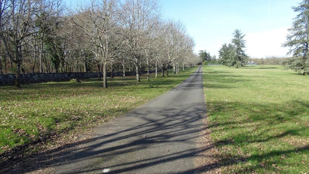 La route qui mène au château du Bosc de Masquières