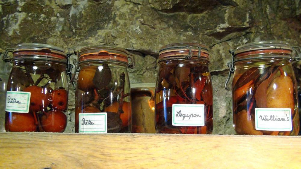 Autres variétés conservées dans un bocal de formol