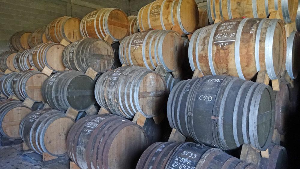 Dans le chais, le Cognac veillit en fût