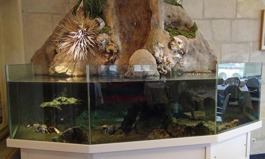 Aquarium à homards
