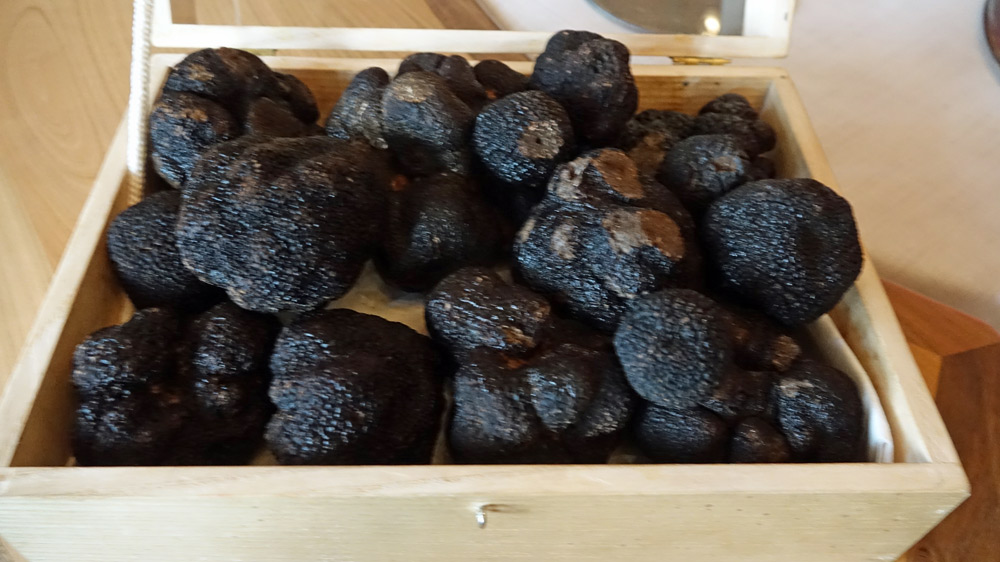 Truffes fraîches de Lalbenque